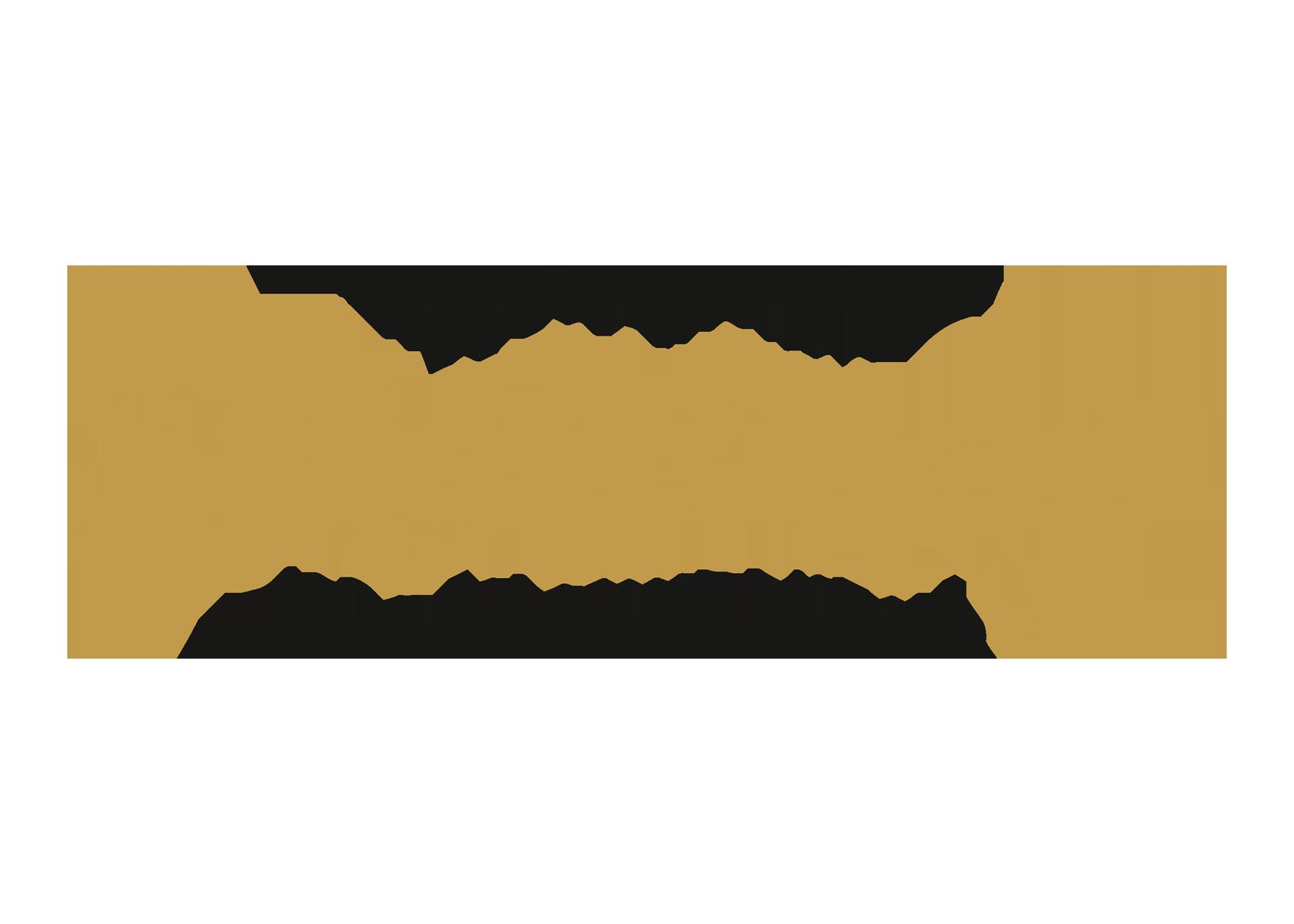 Schatzlmayr Logo | Werbeagentur Roland C. Ritter